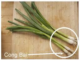 Cong bai