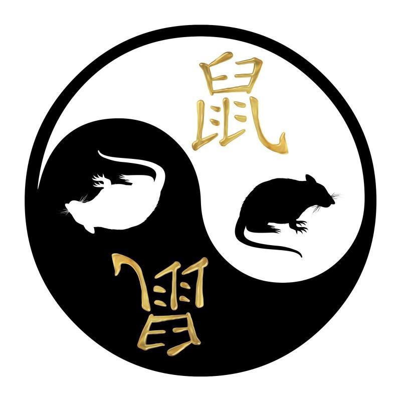 Le signe chinois du rat 1483004349