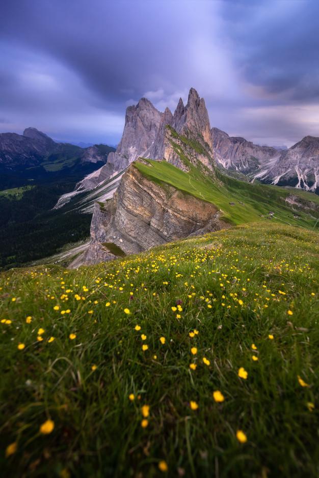 Vue imprenable paysages montagne verte ciel bleu ete dolomites italie 67092 434